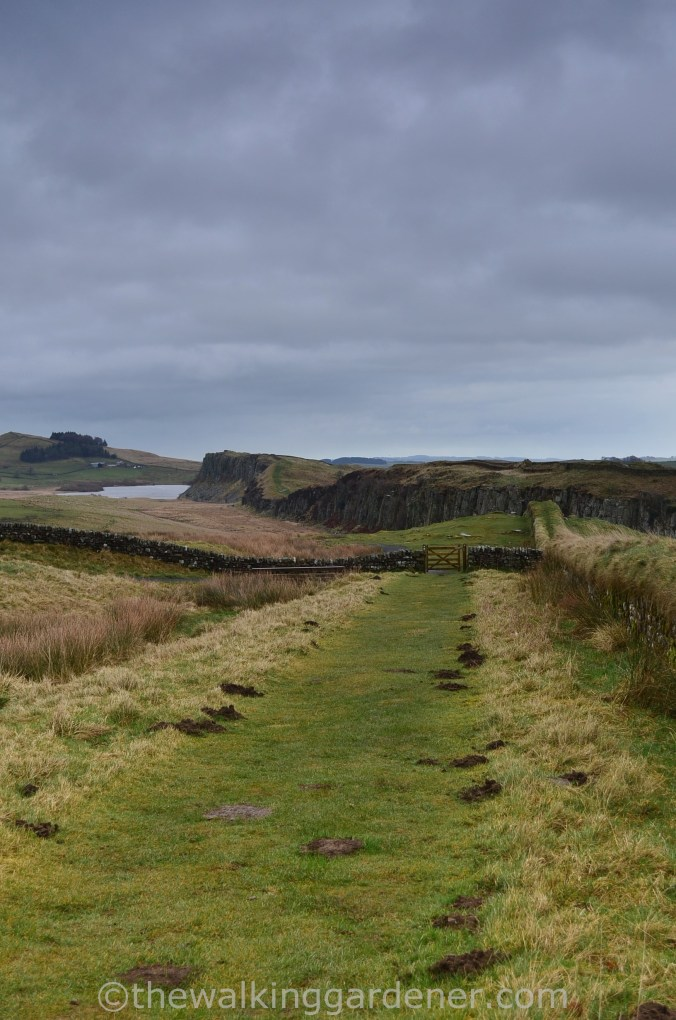 Hadrian's Wall Path Steel Rigg to Wall (1)