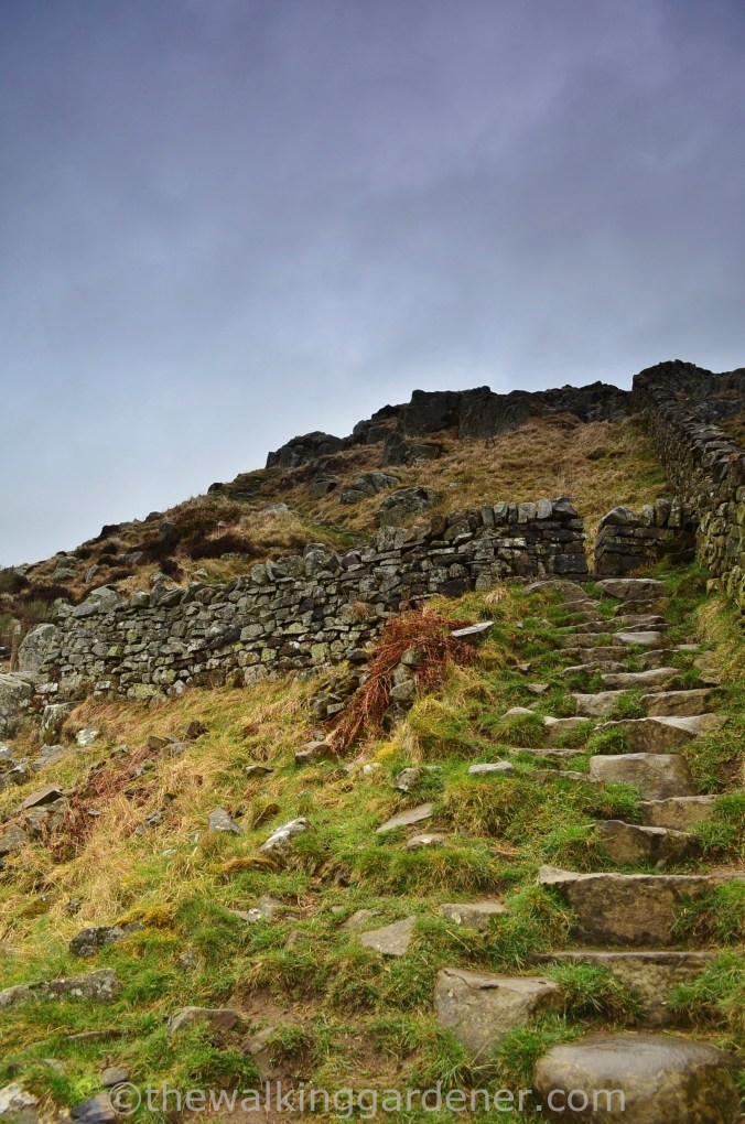 Hadrian's Wall Path Steel Rigg to Wall (2)