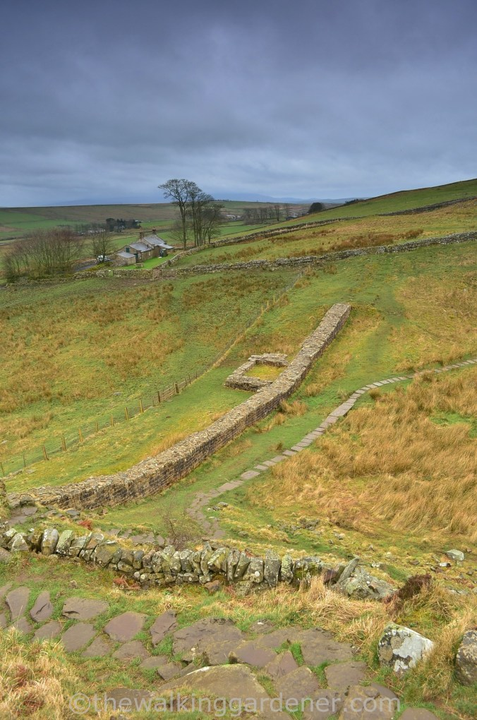 Hadrian's Wall Path Steel Rigg to Wall (3)
