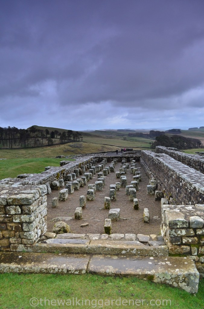The Granary Housesteads