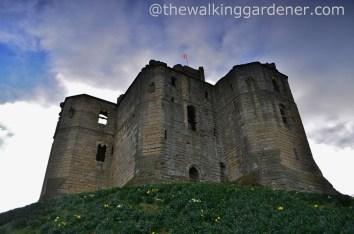 Warkworth Castle (4)