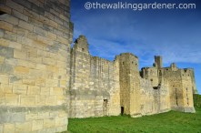 Warkworth Castle (8)