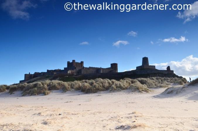 Bamburgh Castle (2)