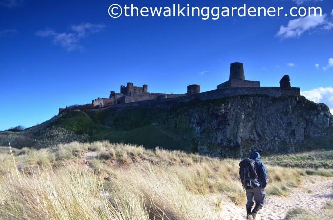 Bamburgh Castle (3)