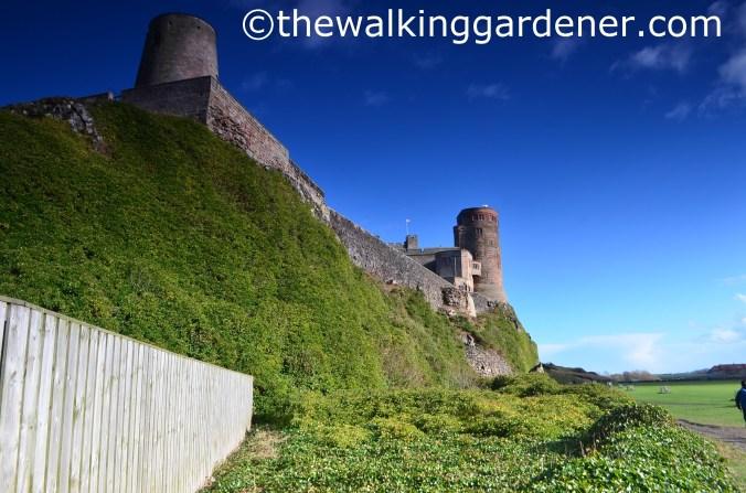 Bamburgh Castle (4)