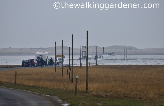 Lindisfarne crossing