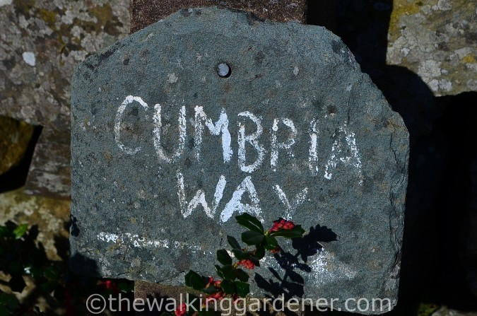 Cumbria Way Sign (4)