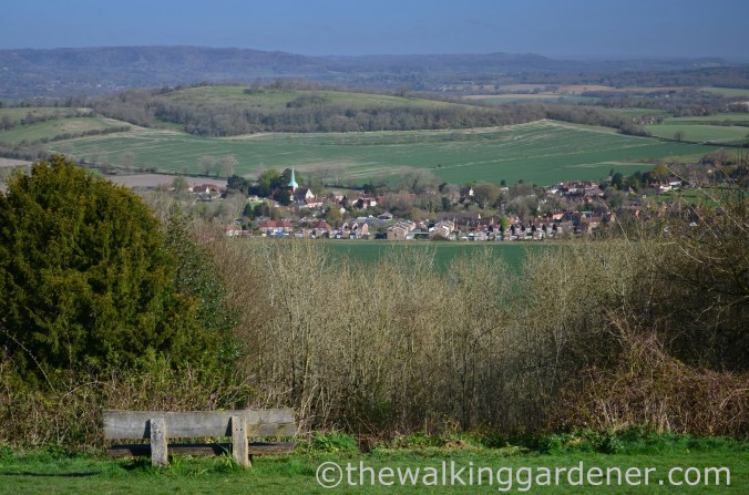 South Harting, South Downs Way