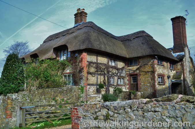 amberley-cottage-2
