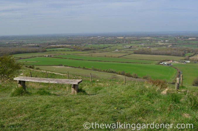 south-downs-way-day-4-17