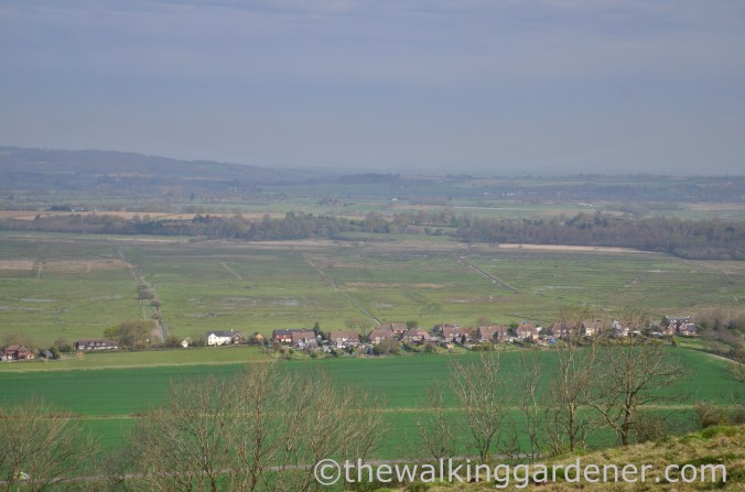 south-downs-way-day-4-3