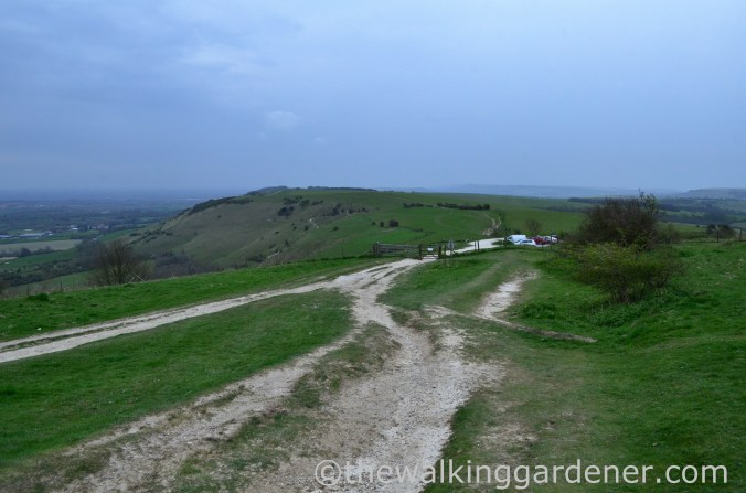 ditchling-beacon-2
