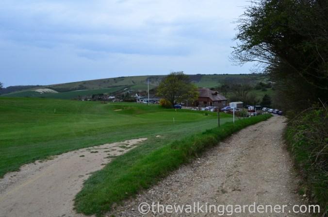 pyecombe-golf-club-2