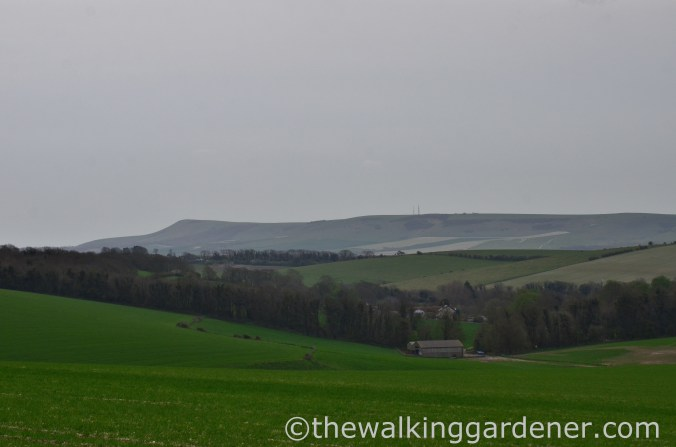 pyecombe-to-southease-south-downs-way-25