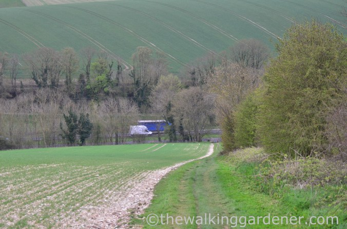 pyecombe-to-southease-south-downs-way-28