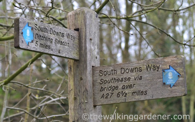 pyecombe-to-southease-south-downs-way-29