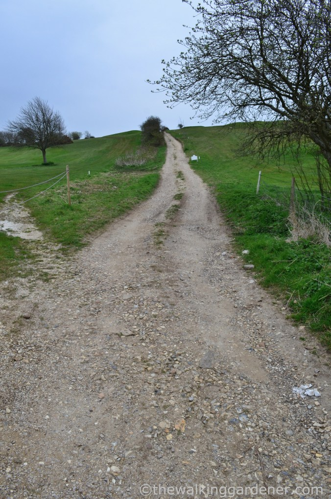 pyecombe-to-southease-south-downs-way-3
