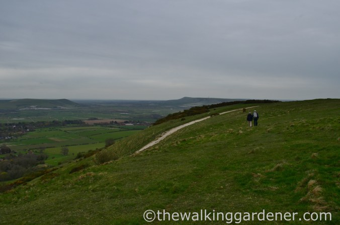 pyecombe-to-southease-south-downs-way-40