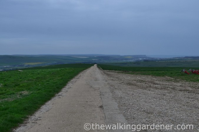 pyecombe-to-southease-south-downs-way-42