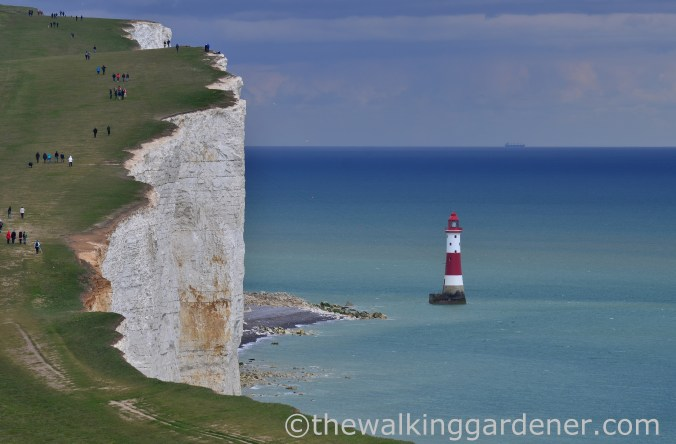 beachy-head-2