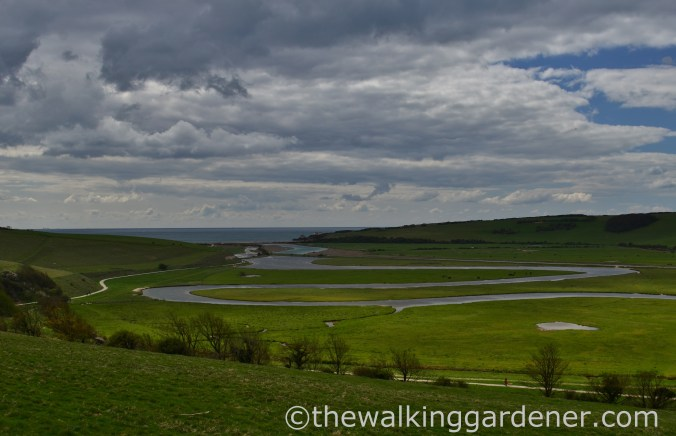 cuckmere-haven-2