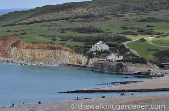 cuckmere-haven