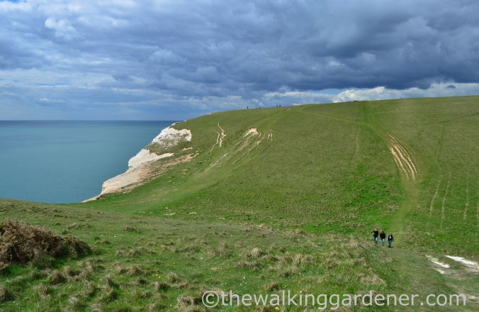 seven-sisters-2