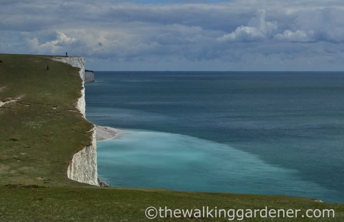 seven-sisters-4