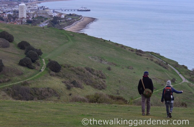south-downs-way-eastbourne