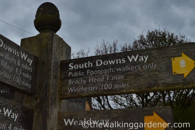 south-downs-way-southease-to-eastbourne-1