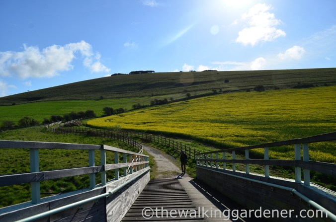 south-downs-way-southease-to-eastbourne-2
