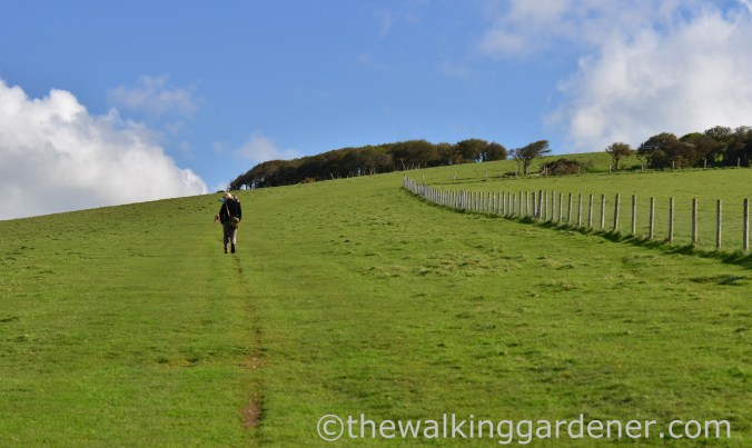 south-downs-way-southease-to-eastbourne-5