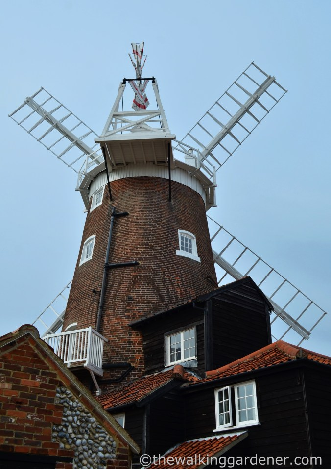 Cley Windmill (2)