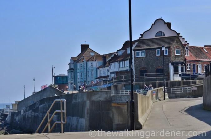 Sheringham (2)