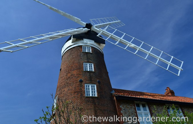 Weybourne Mill