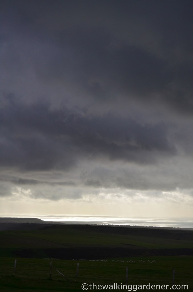 Storm on the South Downs