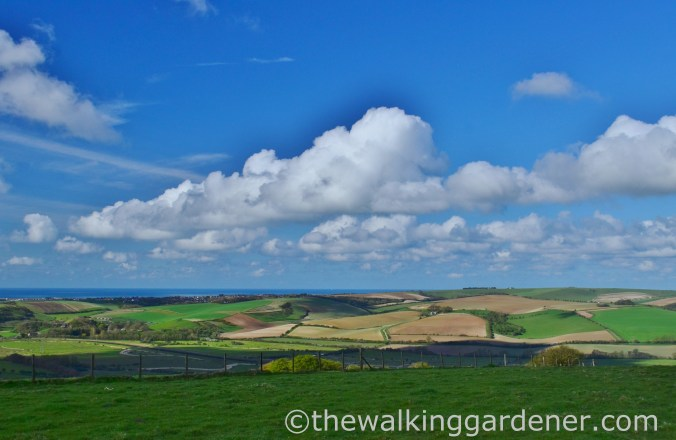 South Downs Way Southease to Eastbourne (7)