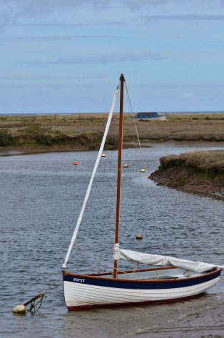 Boat Pipit