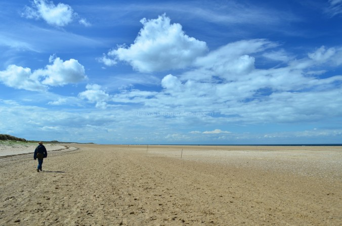 Norfolk Beach(3)