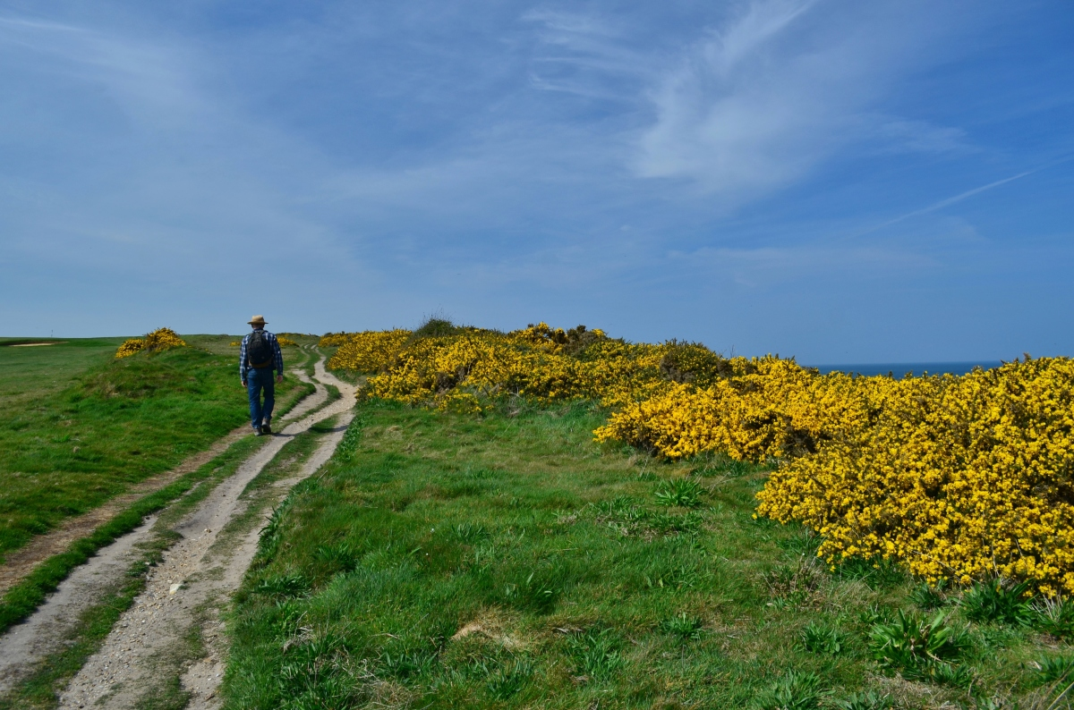 The Norfolk Coast Path: Day 1 - Cromer to Blakeney