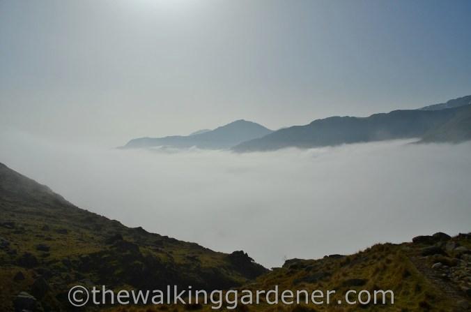Cloud Inversion Lake District (4)