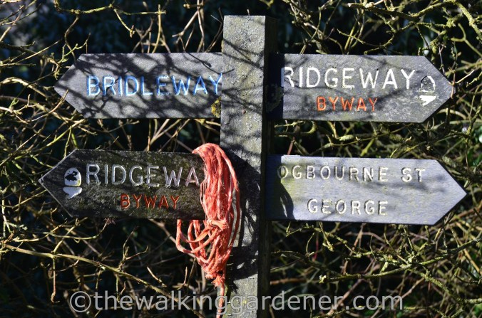 The Ridgeway Day 1 Overton Hill to Liddington (27)
