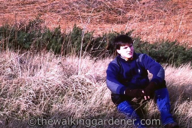 Walking Gardener (2)
