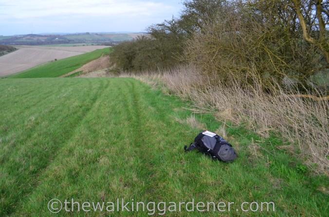 Wildcamping The Ridgeway