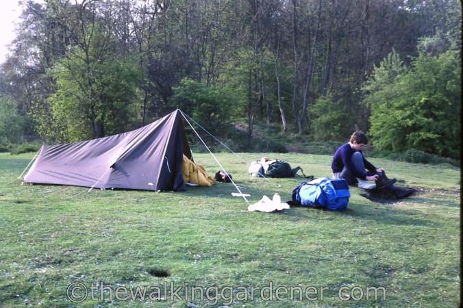 Saunders Jetpacker II Tent