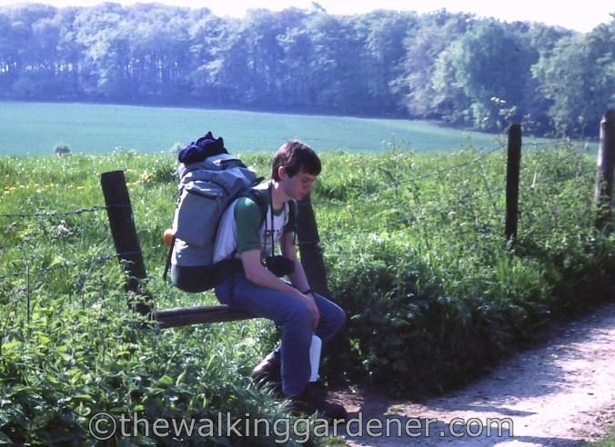 The Ridgeway 1982