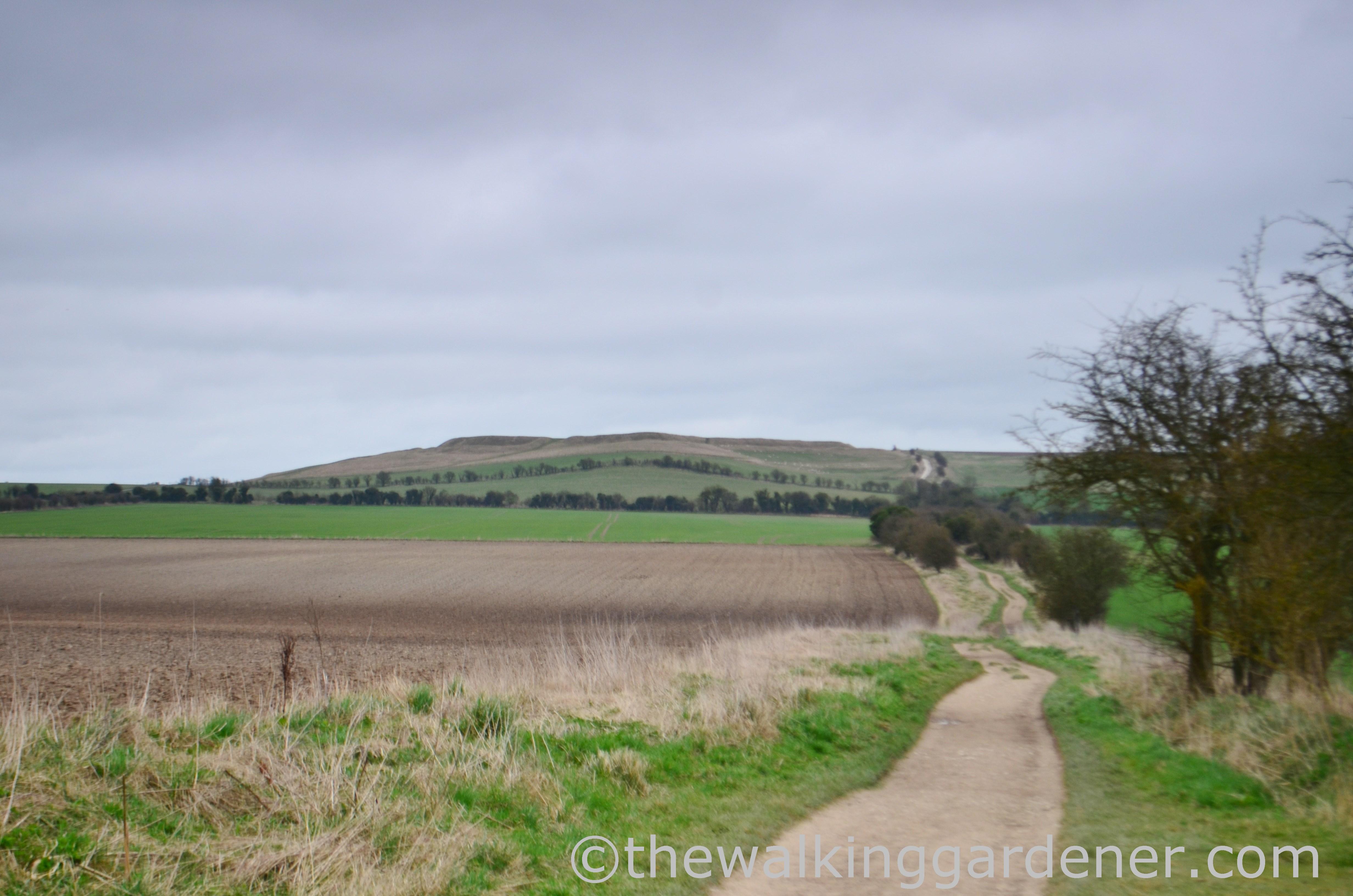The Ridgeway Day 2 (10)