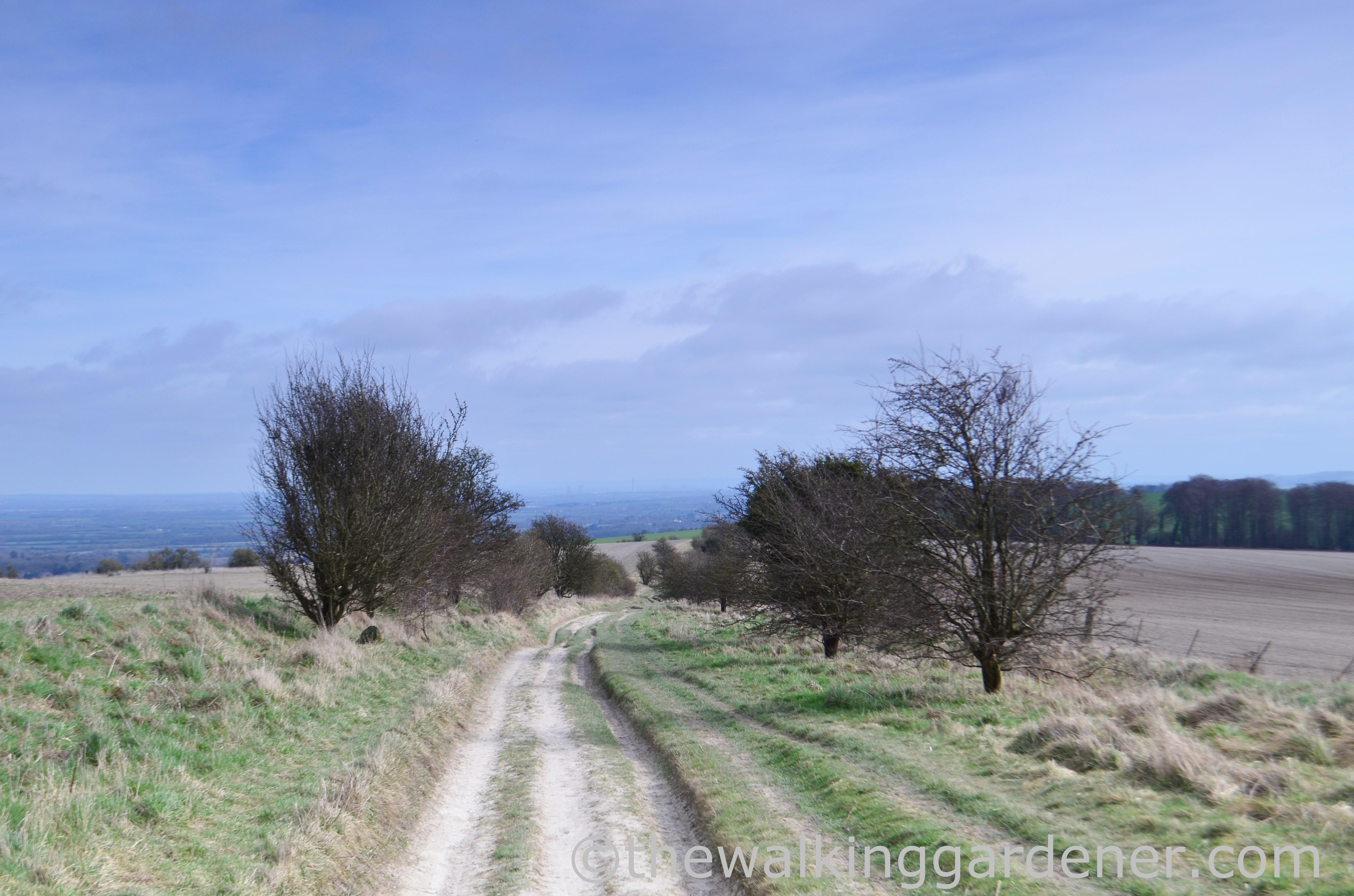 The Ridgeway Day 2 (13)