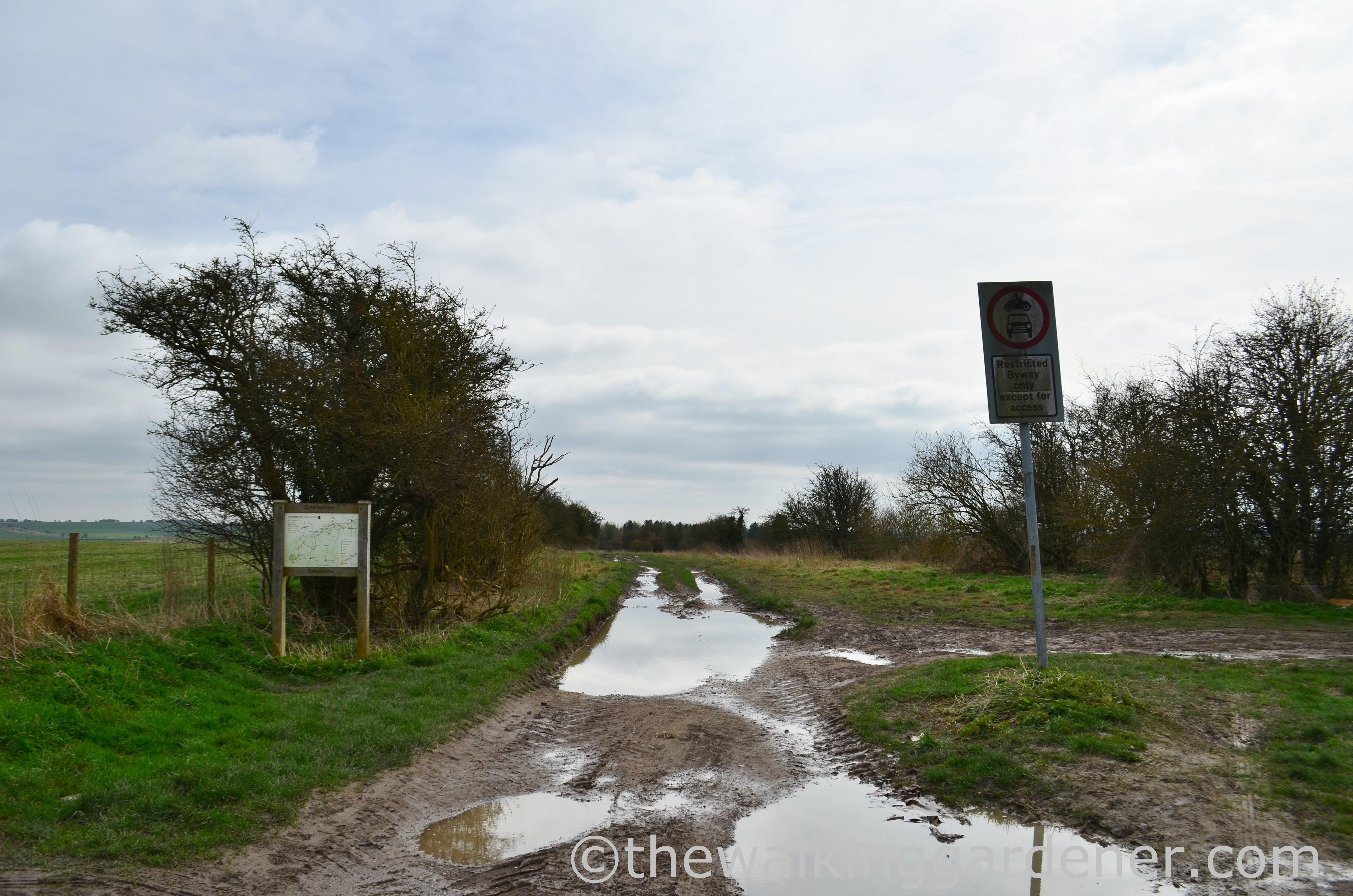 The Ridgeway Day 2 (15)