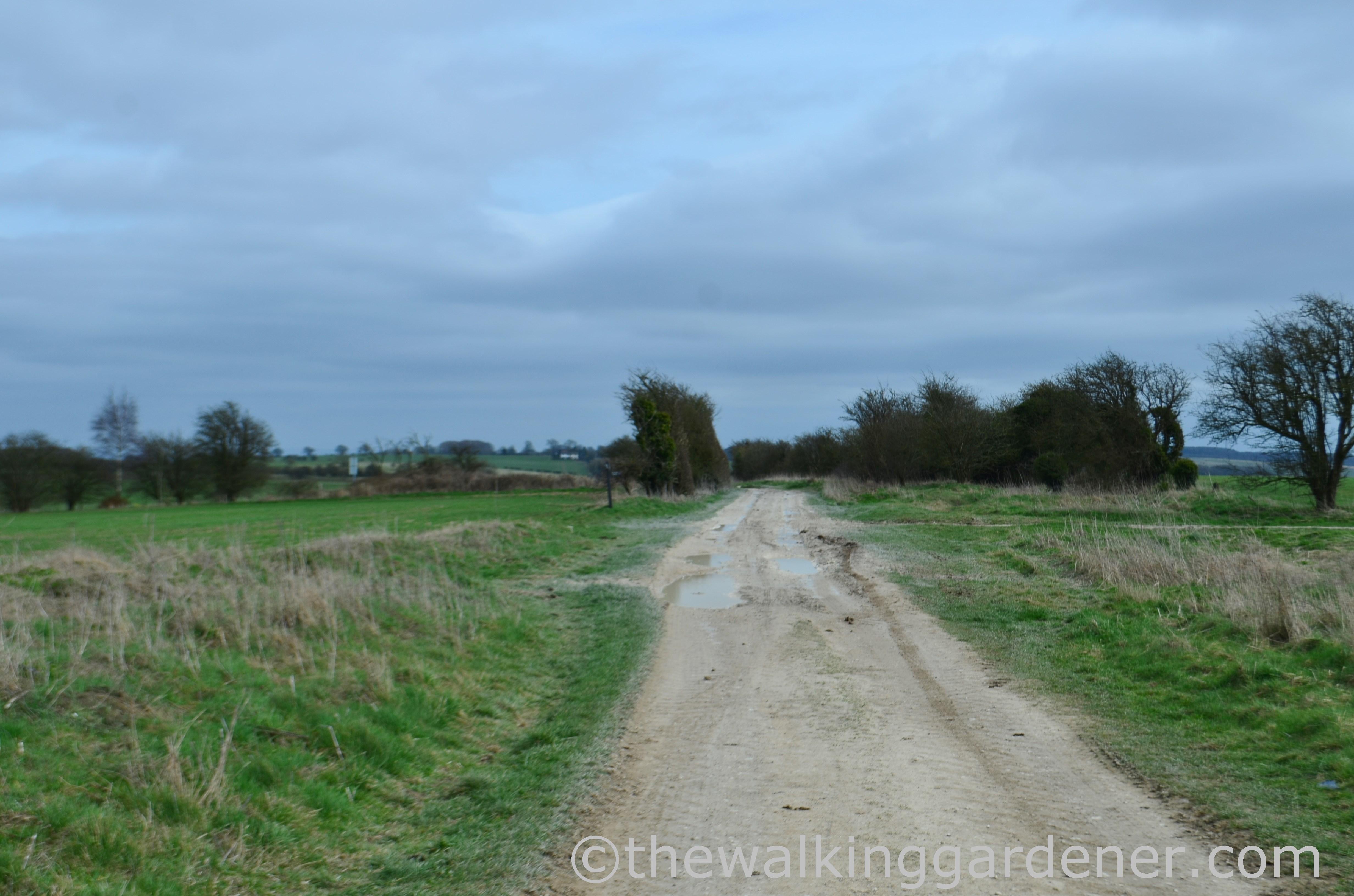 The Ridgeway Day 2 (16)